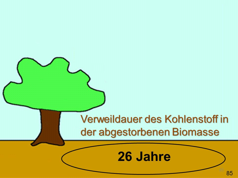 Verweildauer des Kohlenstoff in der abgestorbenen Biomasse