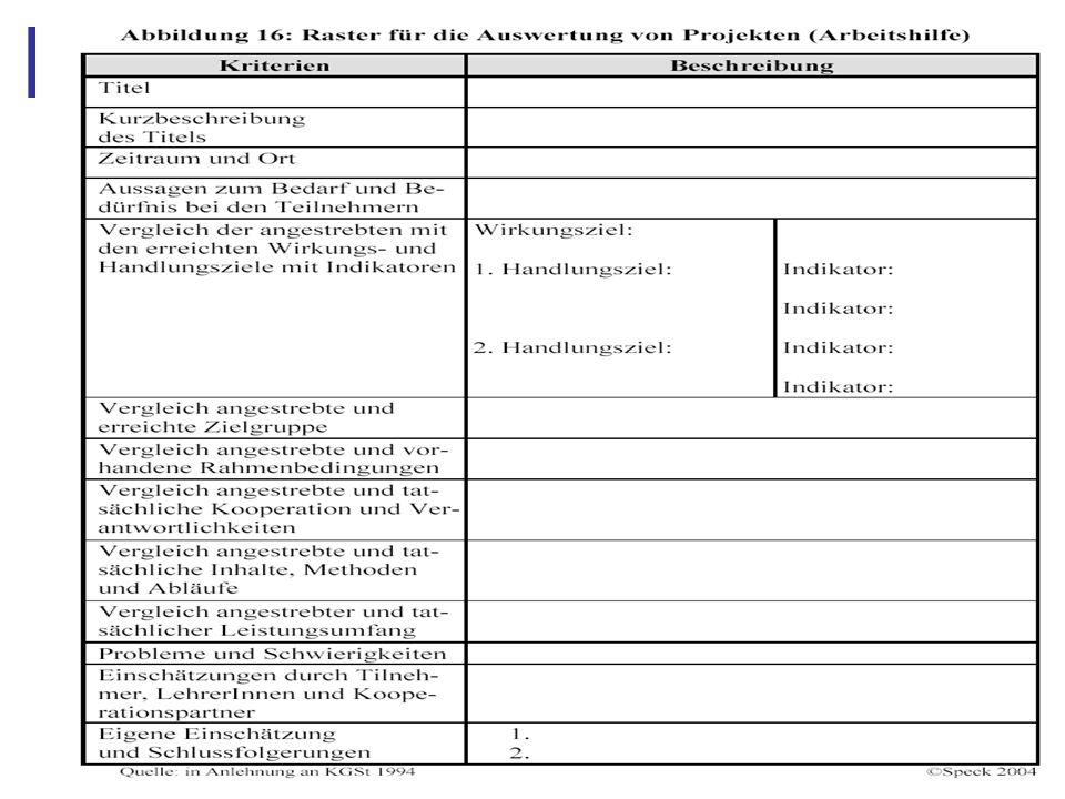 Abbildung 24: Raster für Auswertung von Projekten
