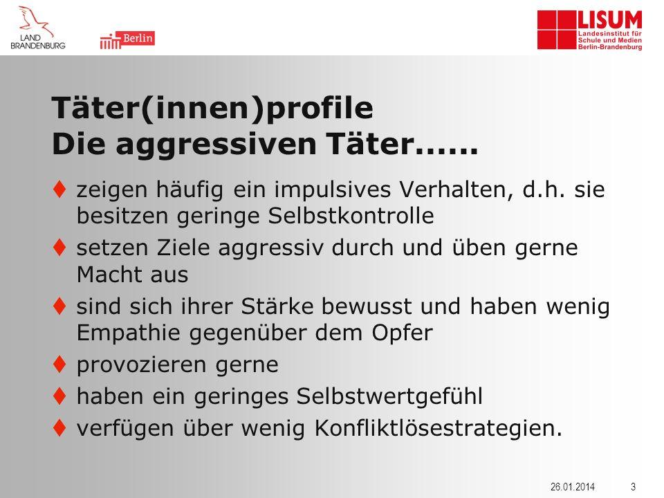 Täter(innen)profile Die aggressiven Täter......