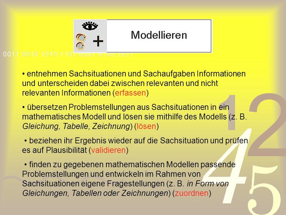 entnehmen Sachsituationen und Sachaufgaben Informationen und unterscheiden dabei zwischen relevanten und nicht relevanten Informationen (erfassen)