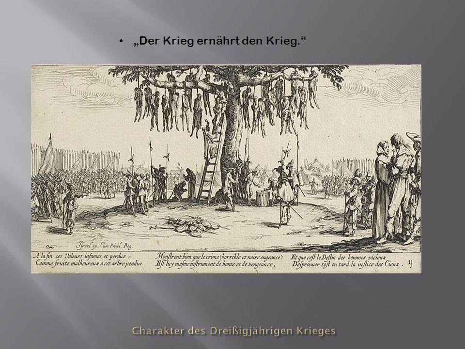 Charakter des Dreißigjährigen Krieges