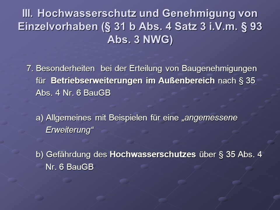 III. Hochwasserschutz und Genehmigung von Einzelvorhaben (§ 31 b Abs