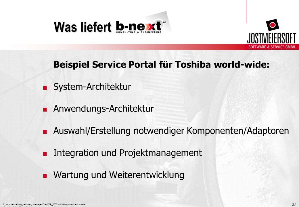 Was liefert Beispiel Service Portal für Toshiba world-wide: