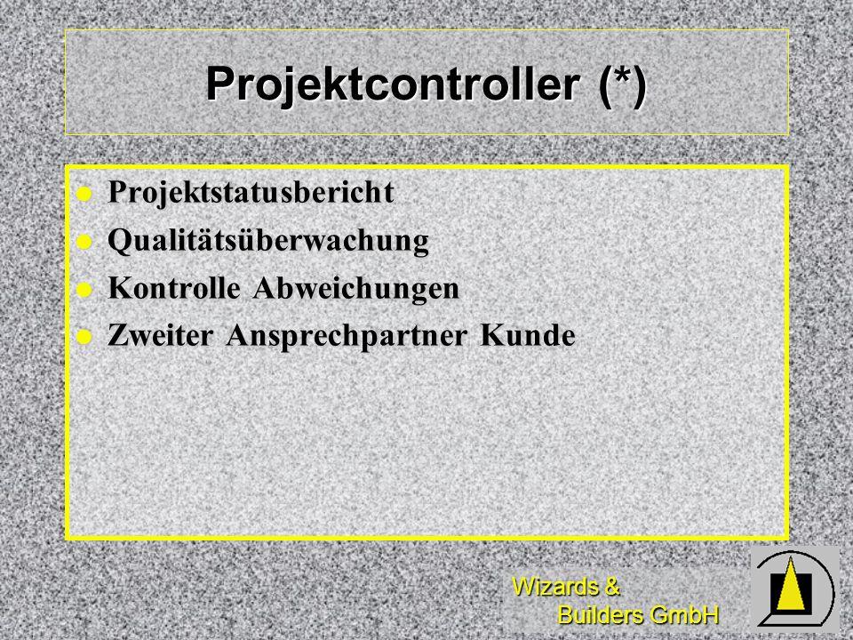Projektcontroller (*)