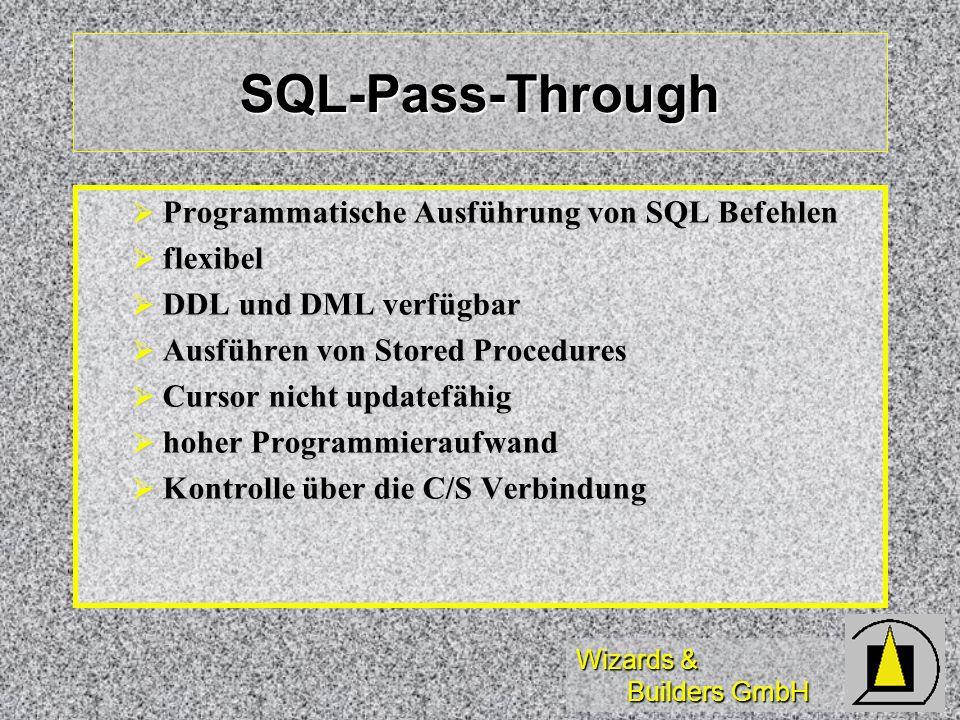 SQL-Pass-Through Programmatische Ausführung von SQL Befehlen flexibel
