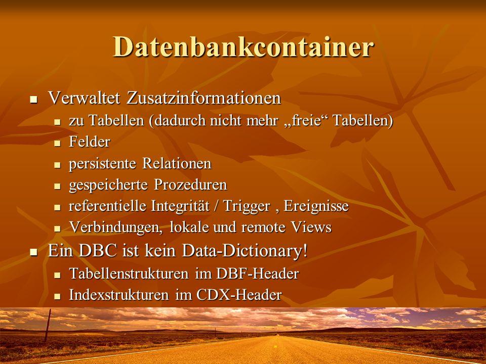 Datenbankcontainer Verwaltet Zusatzinformationen