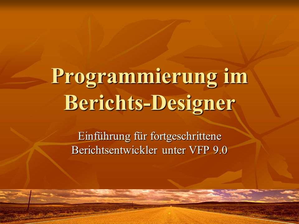 Programmierung im Berichts-Designer