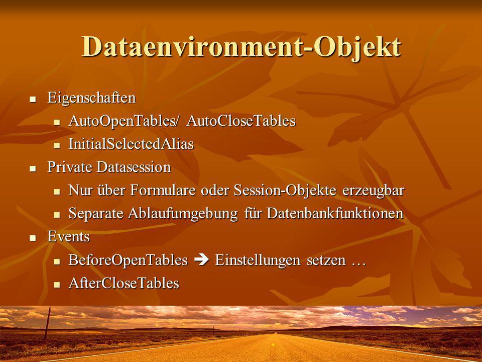 Dataenvironment-Objekt