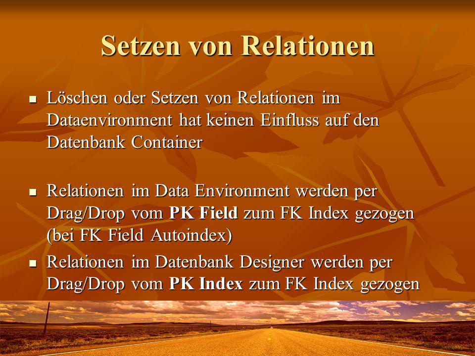 Setzen von Relationen Löschen oder Setzen von Relationen im Dataenvironment hat keinen Einfluss auf den Datenbank Container.