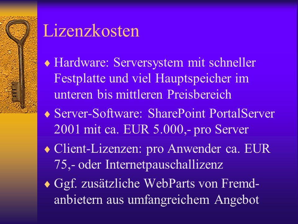 Lizenzkosten Hardware: Serversystem mit schneller Festplatte und viel Hauptspeicher im unteren bis mittleren Preisbereich.