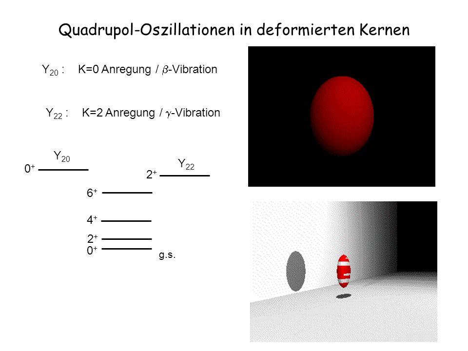 Quadrupol-Oszillationen in deformierten Kernen
