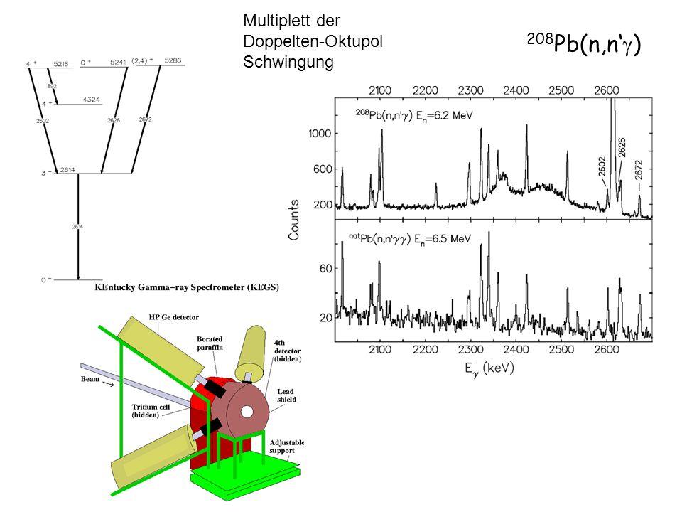 Multiplett der Doppelten-Oktupol Schwingung 208Pb(n,n'g)