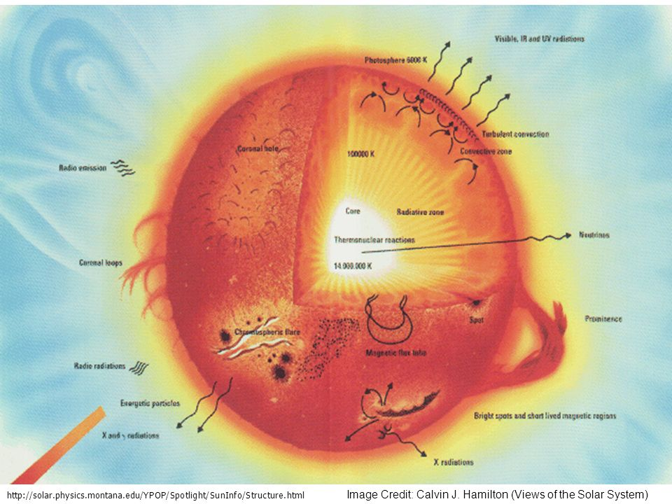 Unsere Sonne http://solar.physics.montana.edu/YPOP/Spotlight/SunInfo/Structure.html.