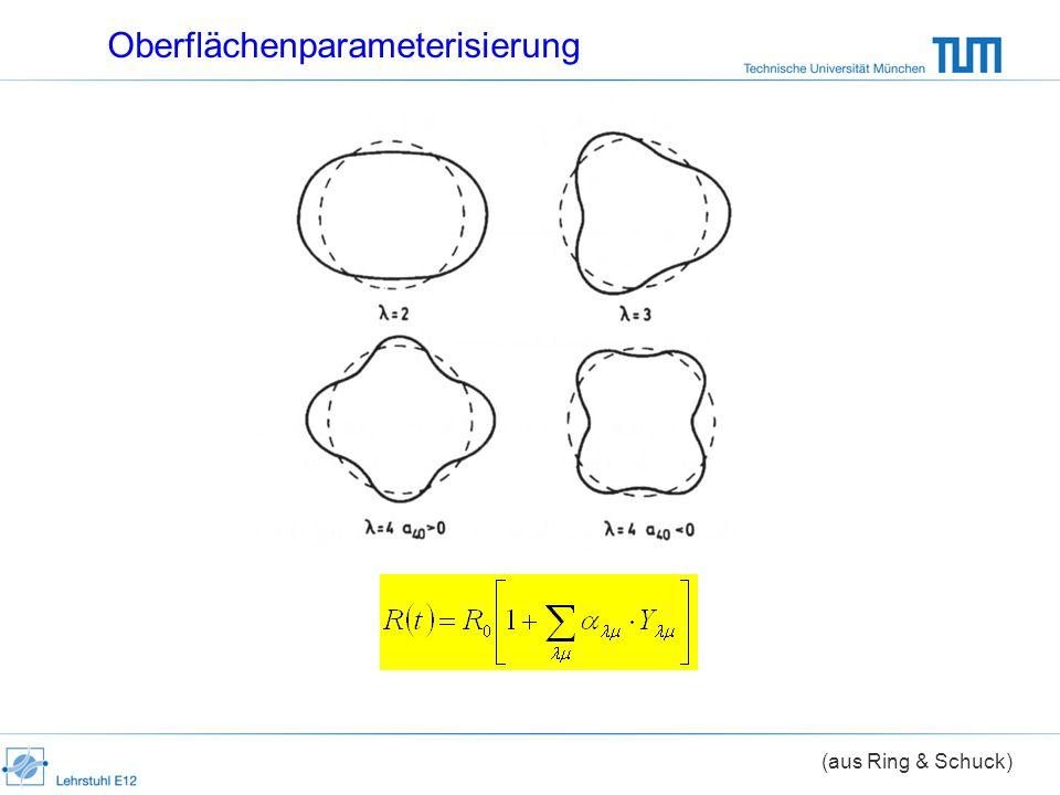 Oberflächenparameterisierung