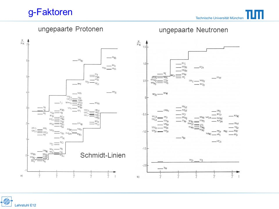 g-Faktoren ungepaarte Protonen ungepaarte Neutronen Schmidt-Linien