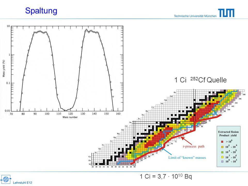 Spaltung 1 Ci 252Cf Quelle 1 Ci = 3,7 · 1010 Bq