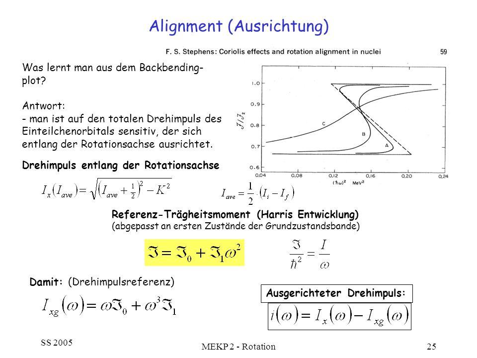 Alignment (Ausrichtung)
