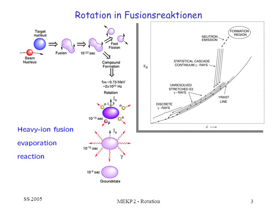 Rotation in Fusionsreaktionen