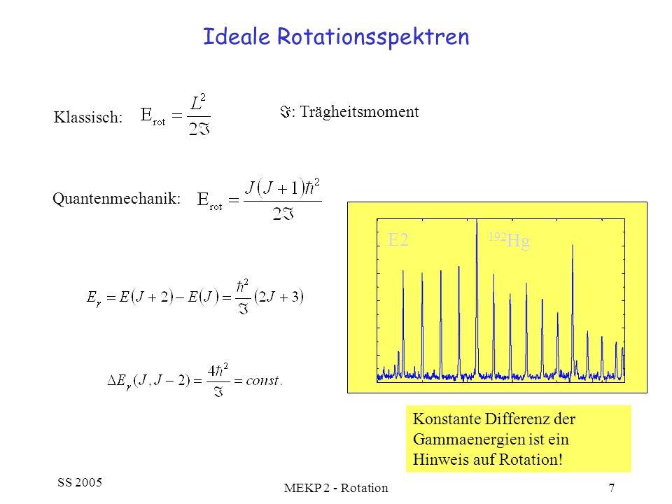Ideale Rotationsspektren