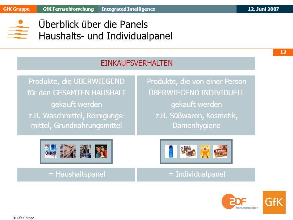 Überblick über die Panels Haushalts- und Individualpanel