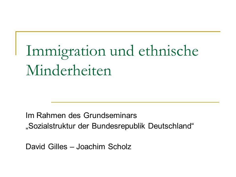 Immigration und ethnische Minderheiten