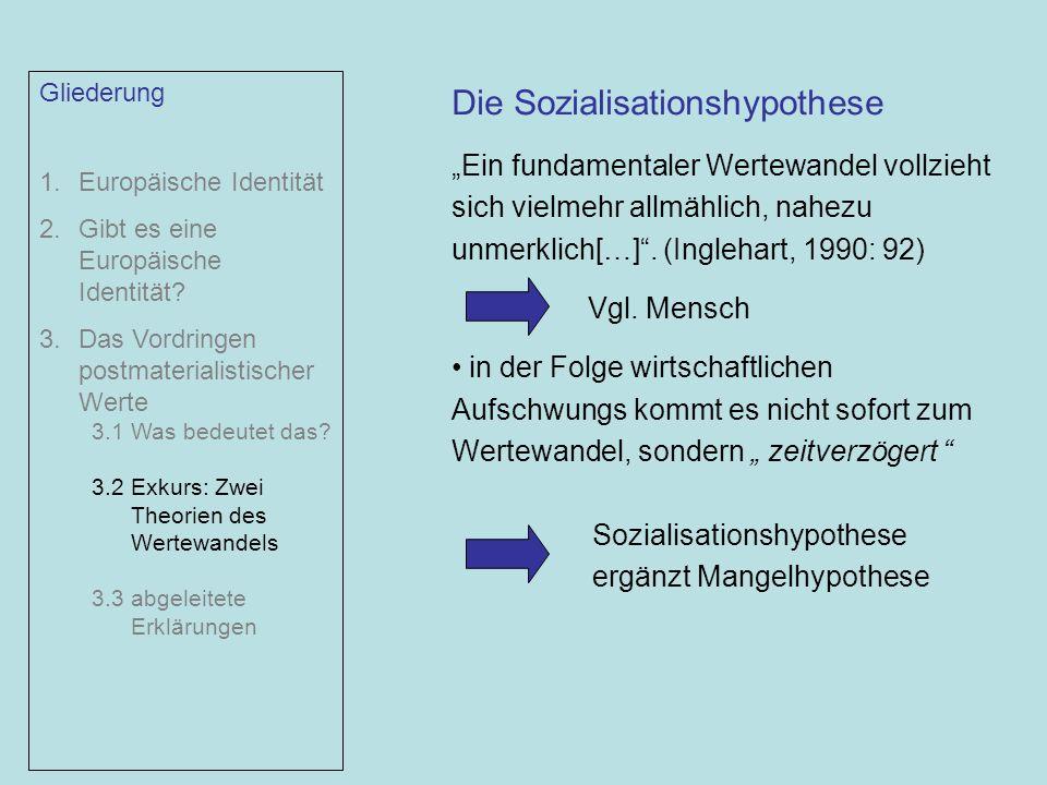 Die Sozialisationshypothese