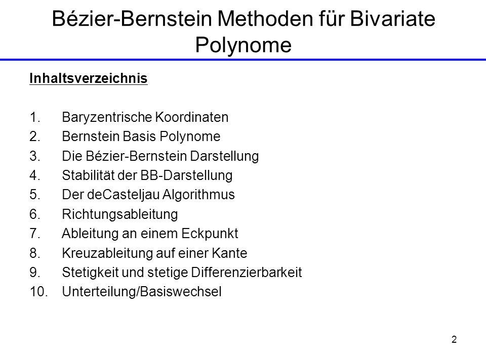 Bézier-Bernstein Methoden für Bivariate Polynome
