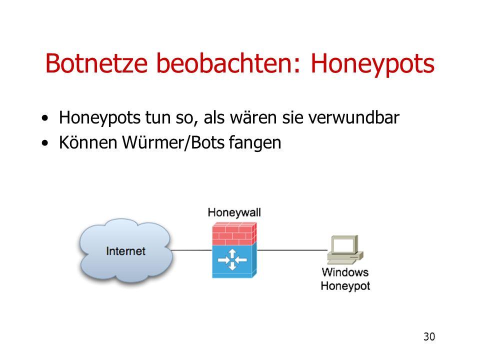 Botnetze beobachten: Honeypots