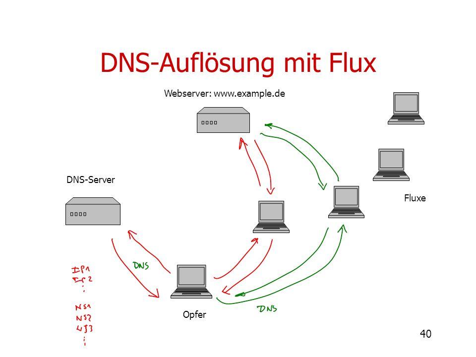 DNS-Auflösung mit Flux