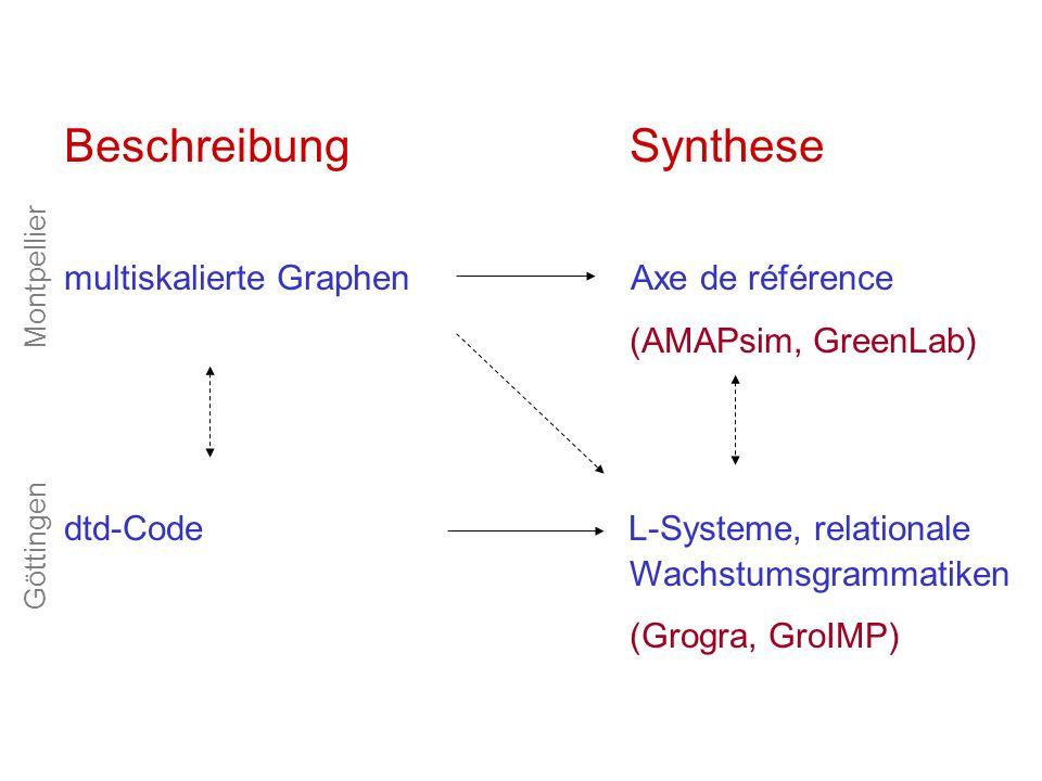 Beschreibung Synthese