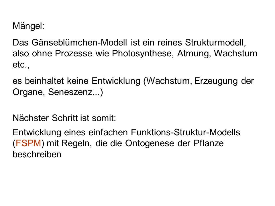 Mängel:Das Gänseblümchen-Modell ist ein reines Strukturmodell, also ohne Prozesse wie Photosynthese, Atmung, Wachstum etc.,