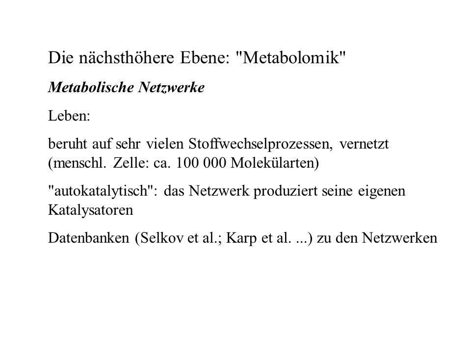 Die nächsthöhere Ebene: Metabolomik