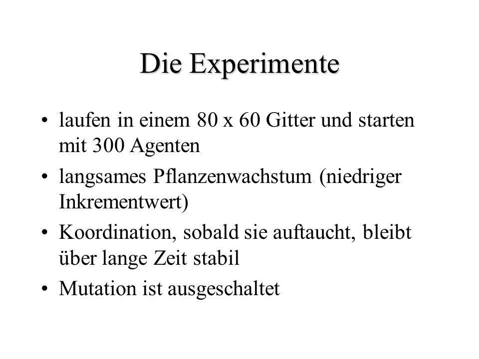 Die Experimente laufen in einem 80 x 60 Gitter und starten mit 300 Agenten. langsames Pflanzenwachstum (niedriger Inkrementwert)