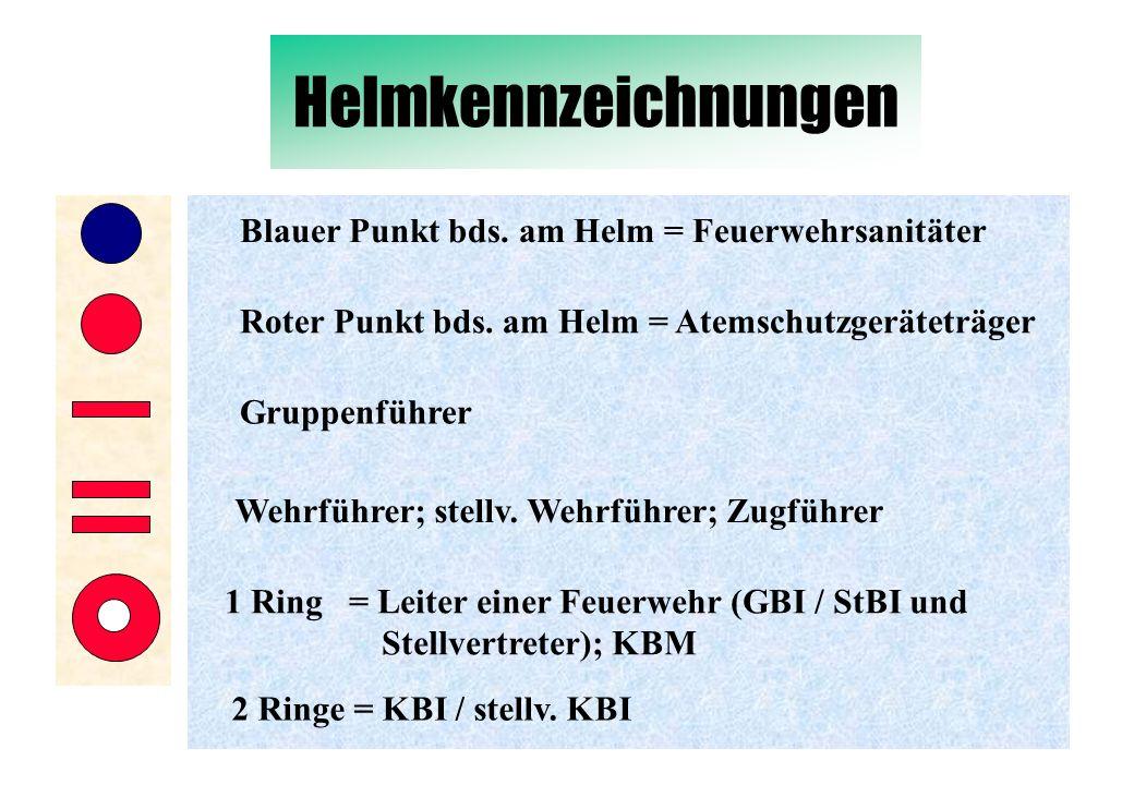 Helmkennzeichnungen Blauer Punkt bds. am Helm = Feuerwehrsanitäter