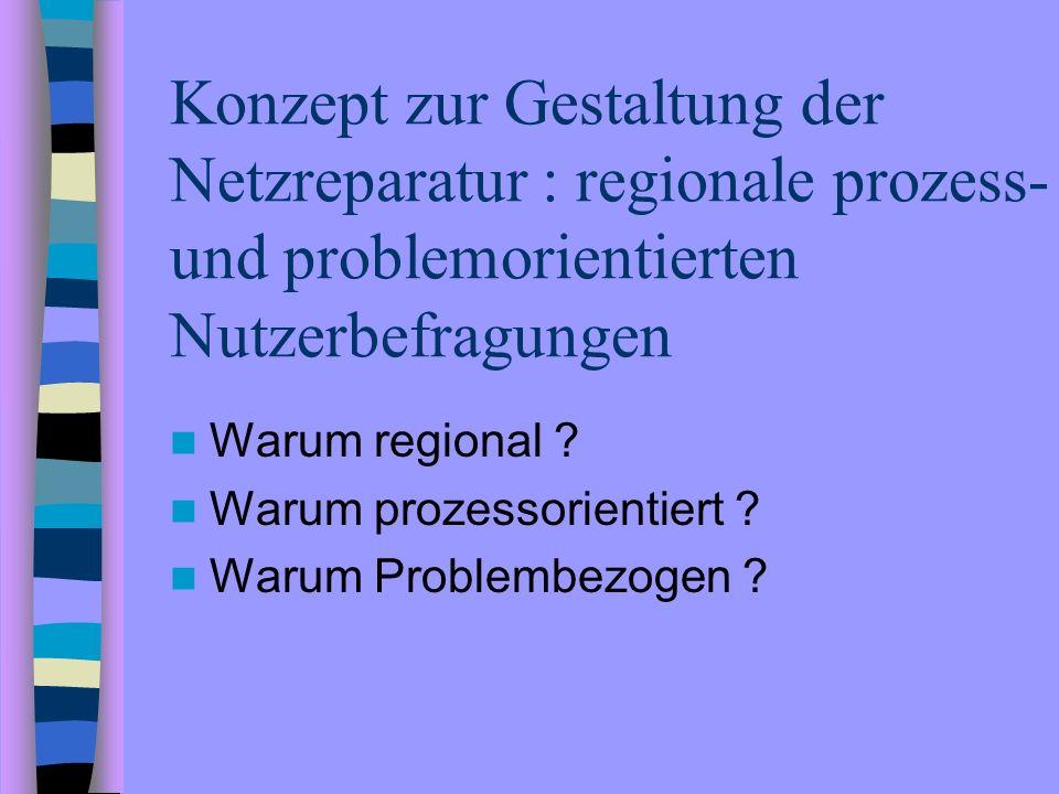 Konzept zur Gestaltung der Netzreparatur : regionale prozess- und problemorientierten Nutzerbefragungen