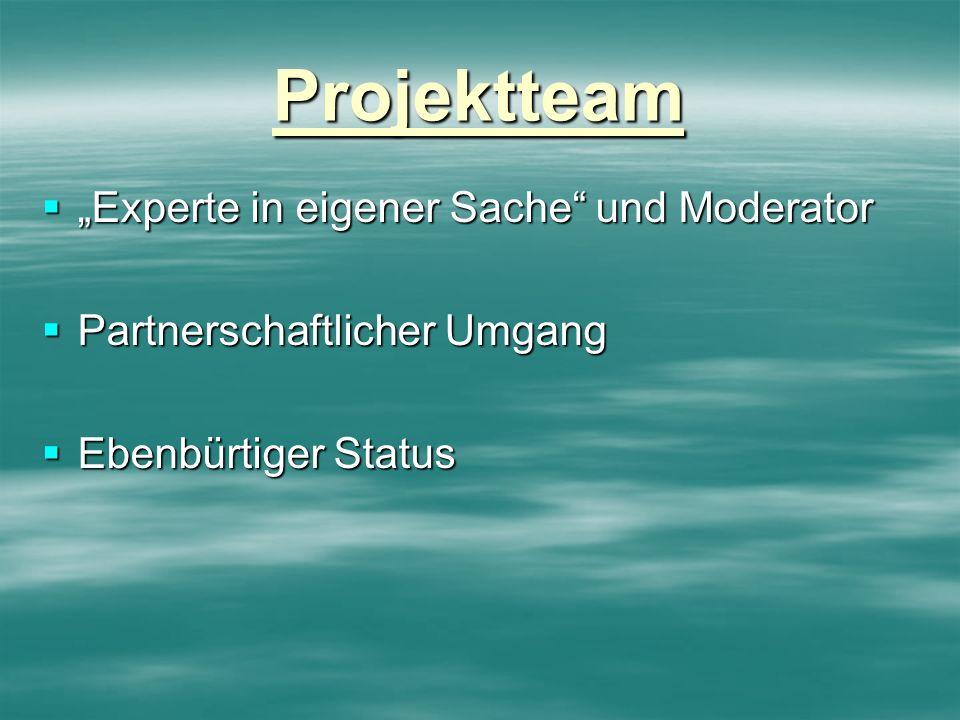 """Projektteam """"Experte in eigener Sache und Moderator"""