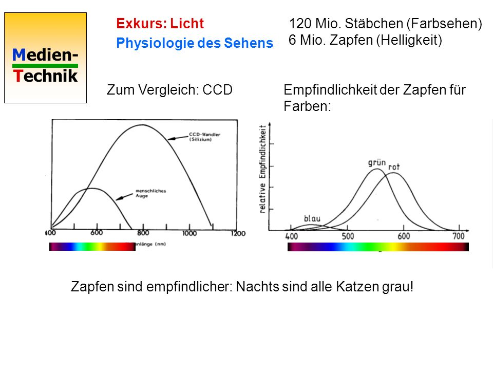 Exkurs: LichtPhysiologie des Sehens. 120 Mio. Stäbchen (Farbsehen) 6 Mio. Zapfen (Helligkeit) Zum Vergleich: CCD.
