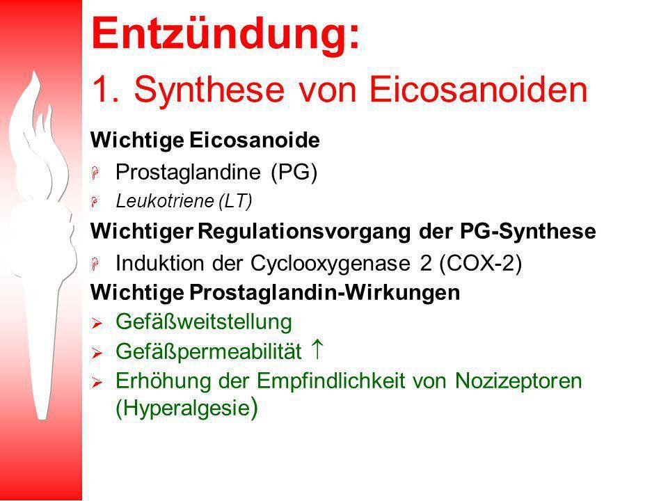 Entzündung: 1. Synthese von Eicosanoiden