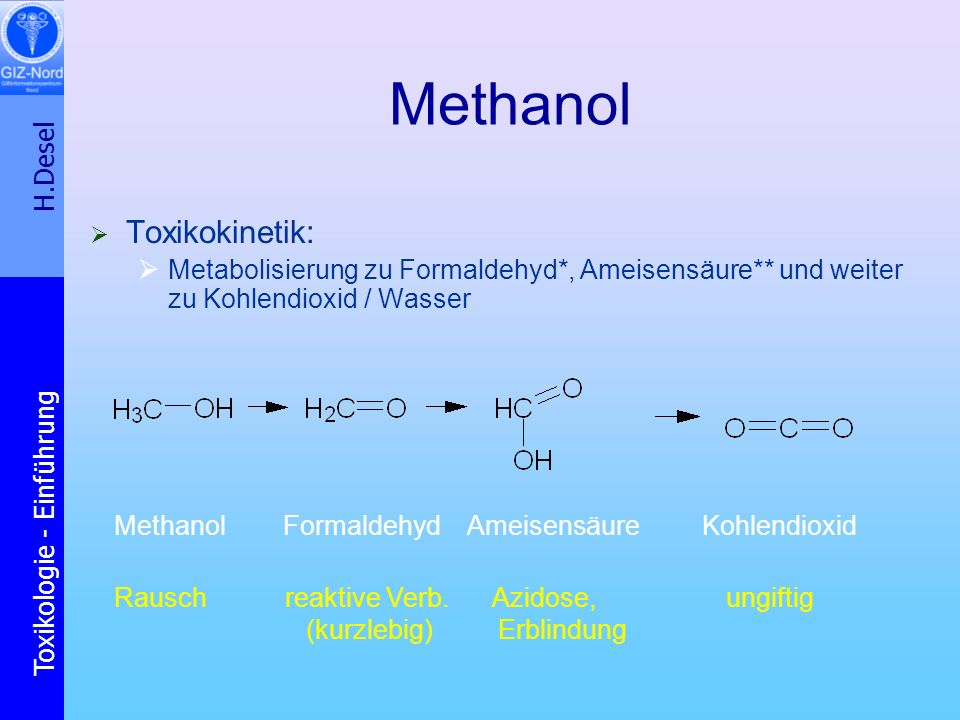 Methanol Toxikokinetik: