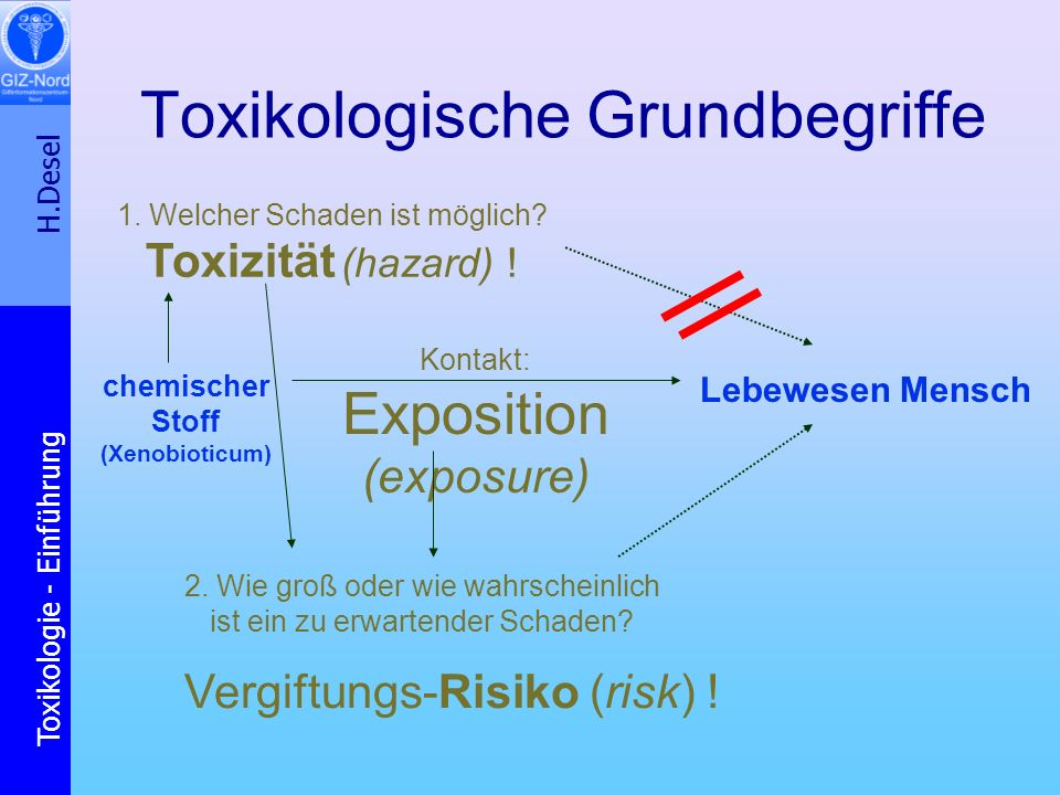 Toxikologische Grundbegriffe
