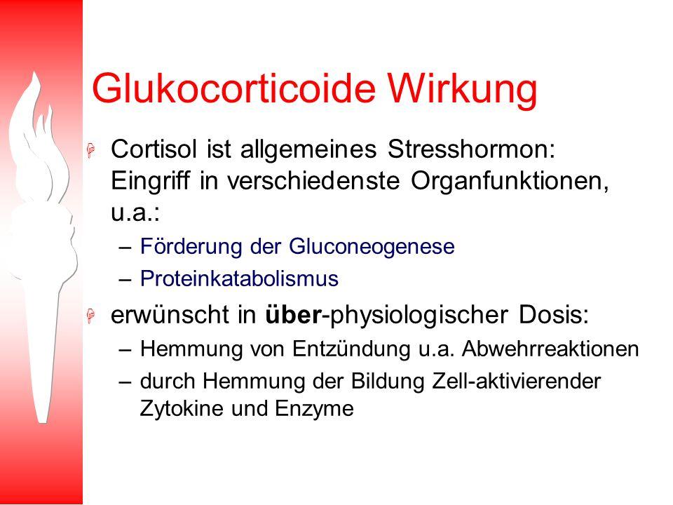 Glukocorticoide Wirkung