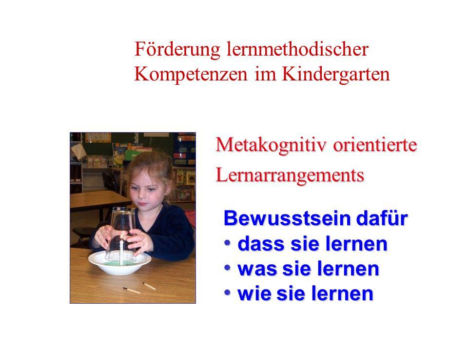 Förderung lernmethodischer Kompetenzen im Kindergarten