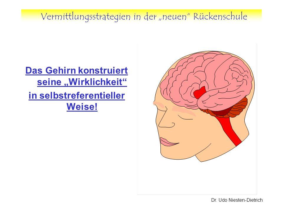 """Das Gehirn konstruiert seine """"Wirklichkeit"""