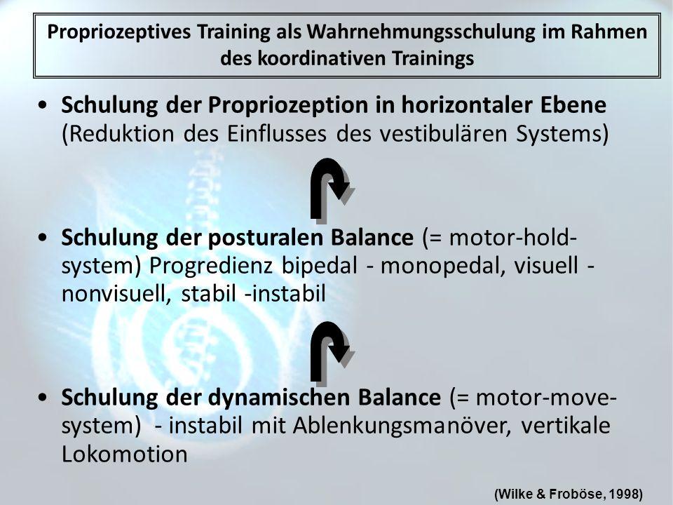 Propriozeptives Training als Wahrnehmungsschulung im Rahmen des koordinativen Trainings