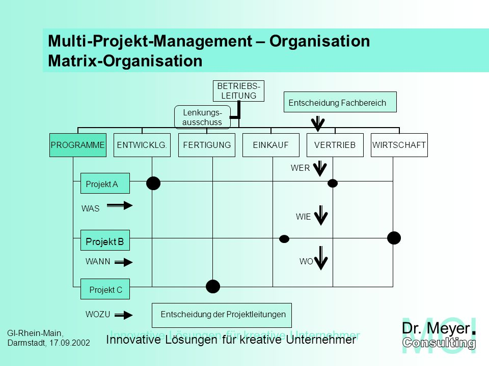 Multi-Projekt-Management – Organisation Matrix-Organisation