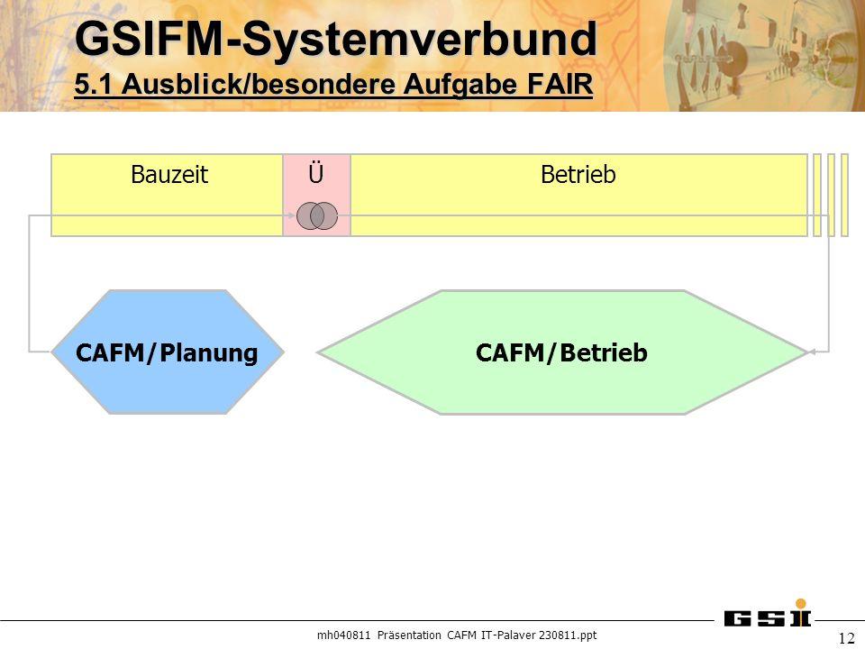 GSIFM-Systemverbund 5.1 Ausblick/besondere Aufgabe FAIR