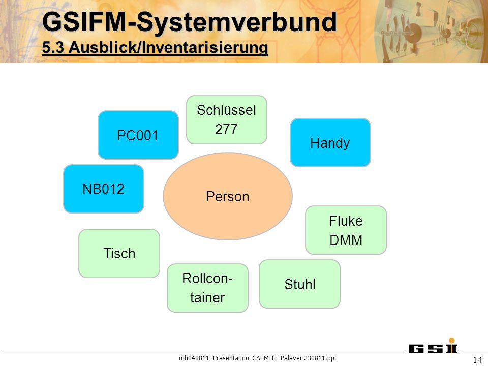 GSIFM-Systemverbund 5.3 Ausblick/Inventarisierung