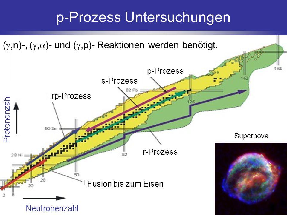 p-Prozess Untersuchungen