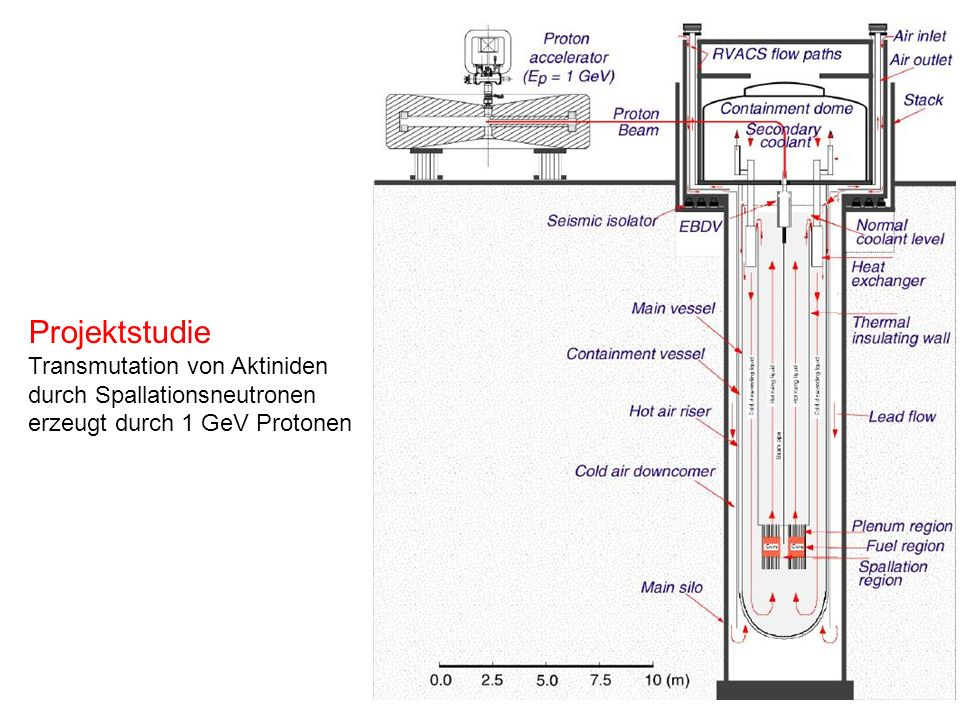 Projektstudie Transmutation von Aktiniden durch Spallationsneutronen