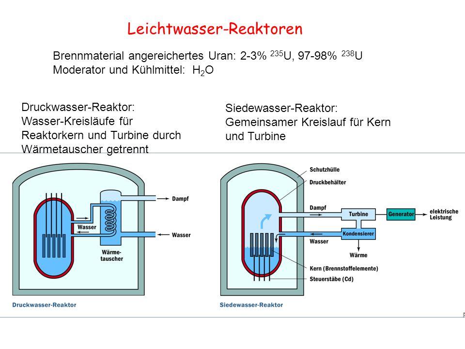 Leichtwasser-Reaktoren